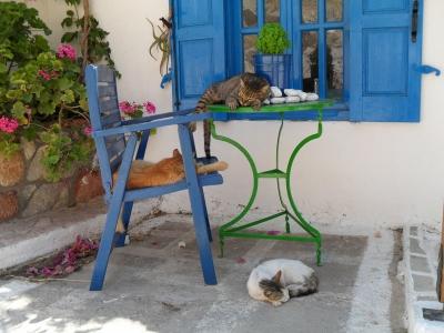 Deko-Katzen